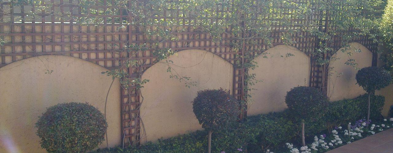 Oxford Trellis Modern Garden