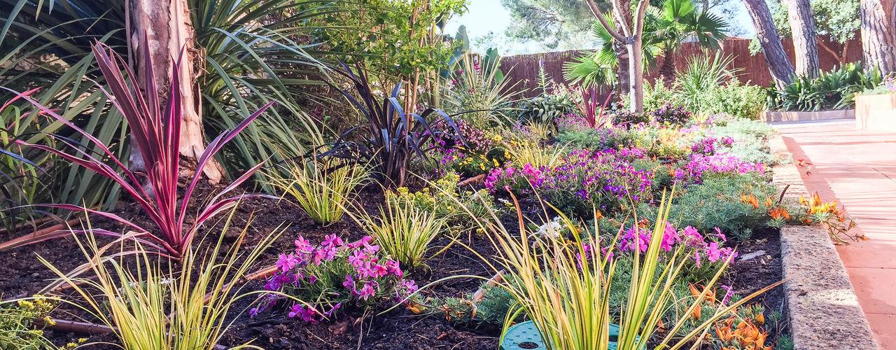 Jardin en La Fosca Nosaltres Toquem Fusta S.L. Jardines de estilo tropical