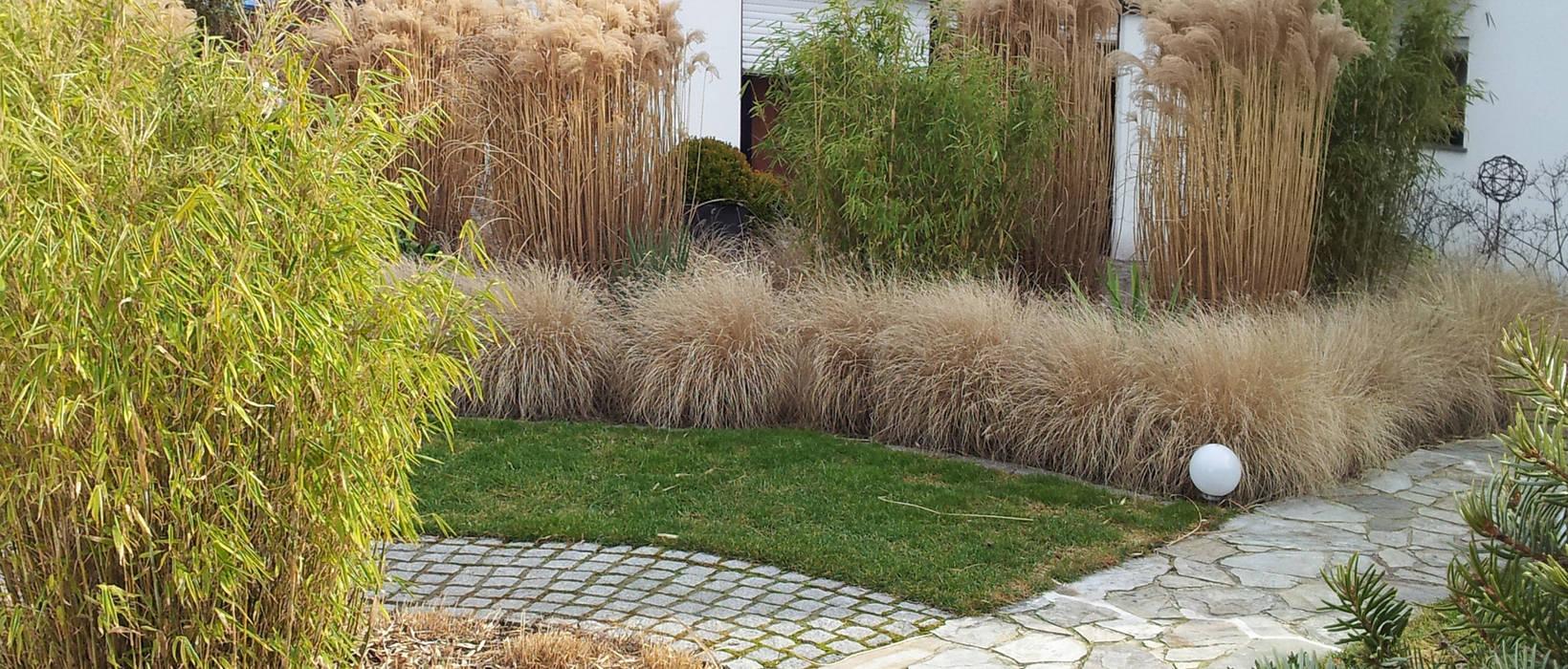 Gräser- und Buchsgarten:  Garten von Planungsbüro STEFAN LAPORT