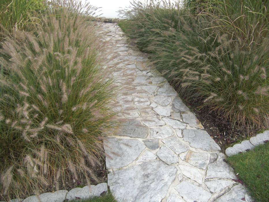 Gräser-und Buchsgarten:  Garten von Planungsbüro STEFAN LAPORT