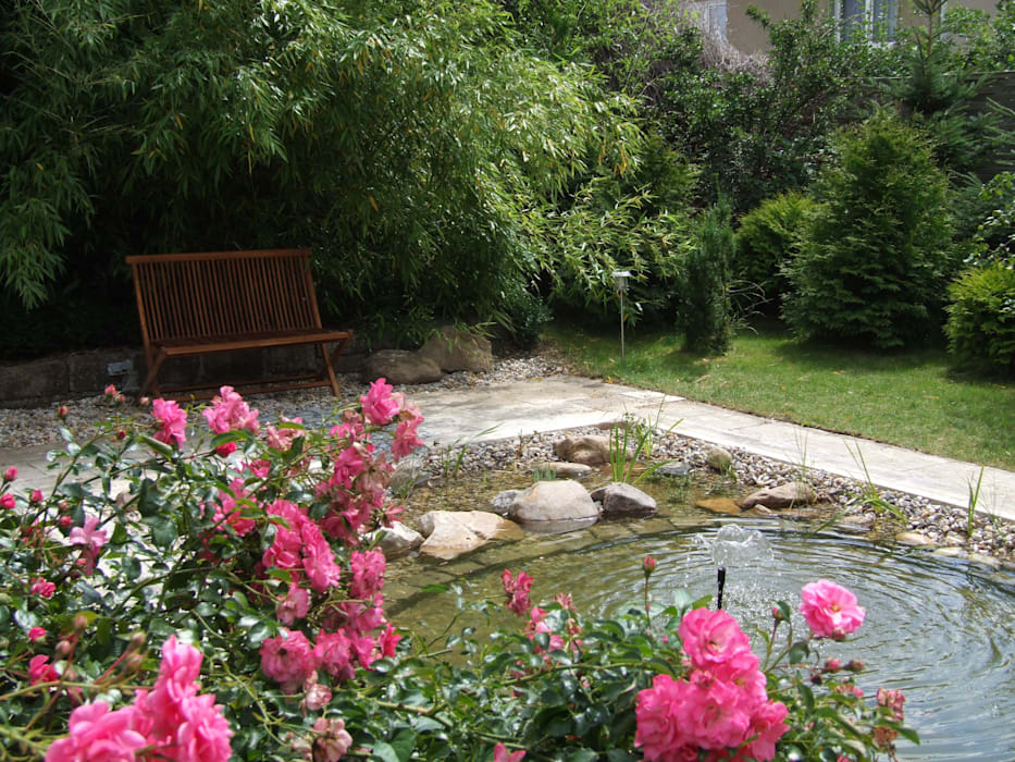 Vom Pool zum Naturteich: moderner Garten von Schönberg. Pflanzdesign