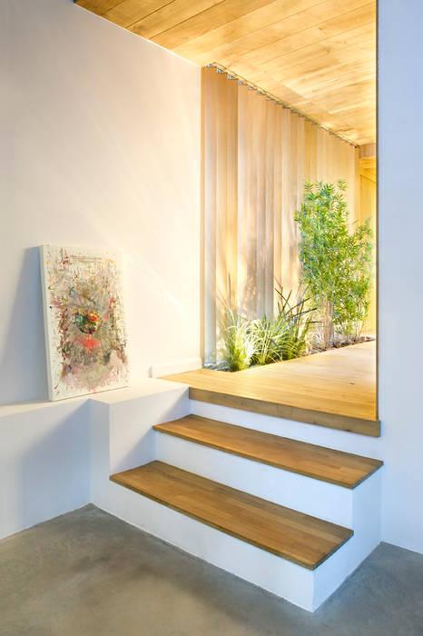 Bajo comercial convertido en loft (Terrassa) Egue y Seta Pasillos, vestíbulos y escaleras de estilo rústico