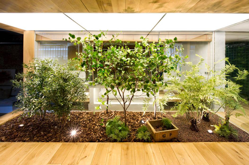 Jardines de invierno de estilo rústico de Egue y Seta Rústico