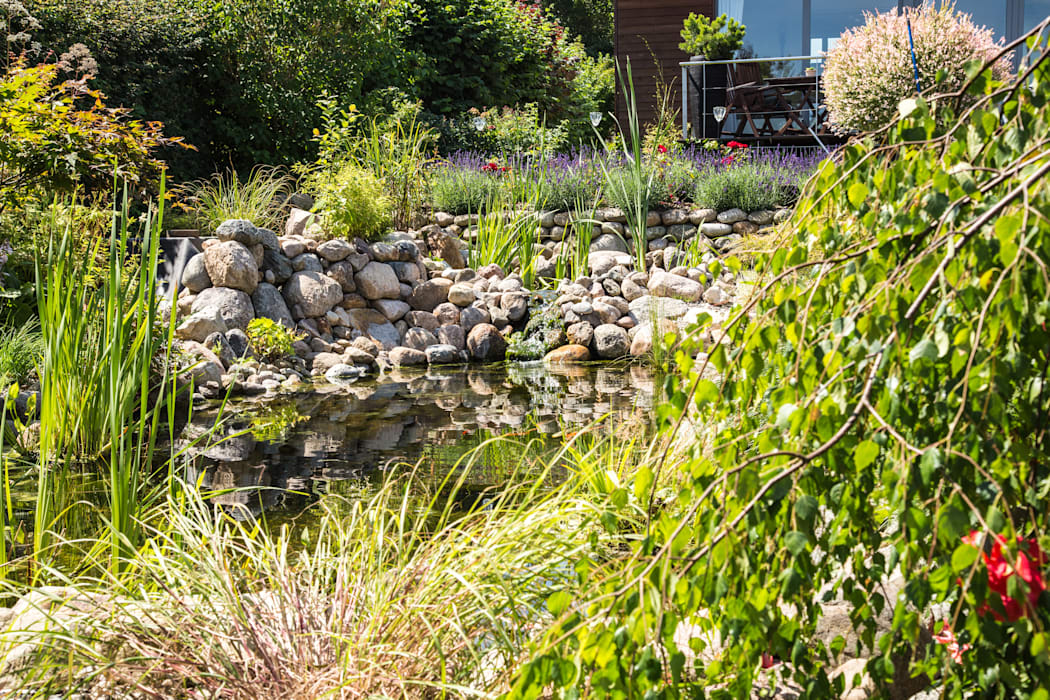 Koiteich: ausgefallener Garten von Oswald Gärten