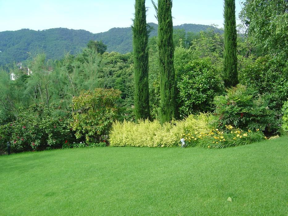 Nuovo giardino con piscina in collina : Giardino in stile  di Studio Green Design, Moderno