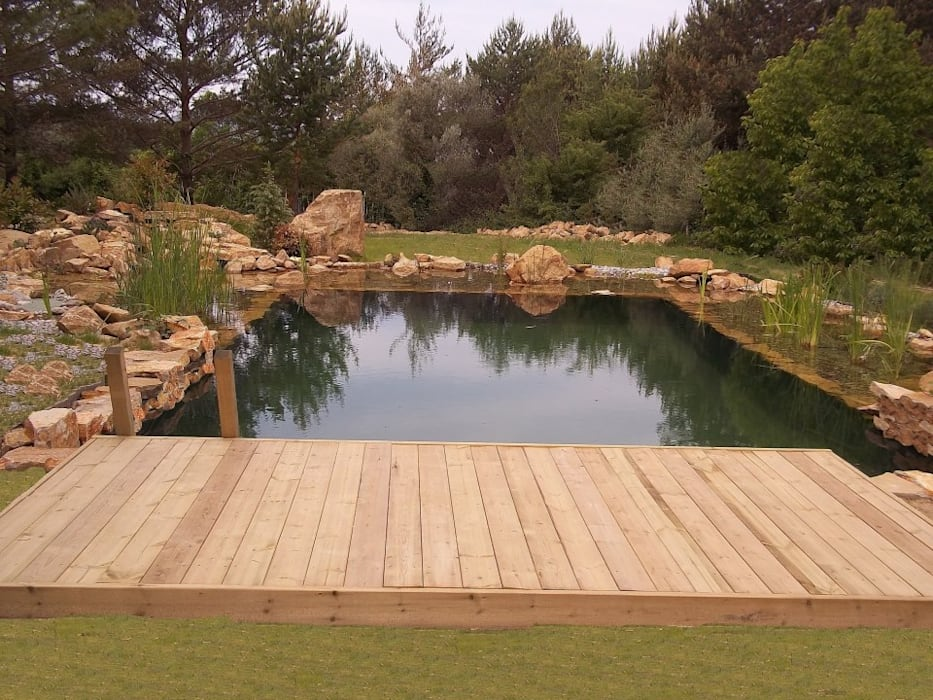 Pool by VIVSA. VIVIENDA SANA
