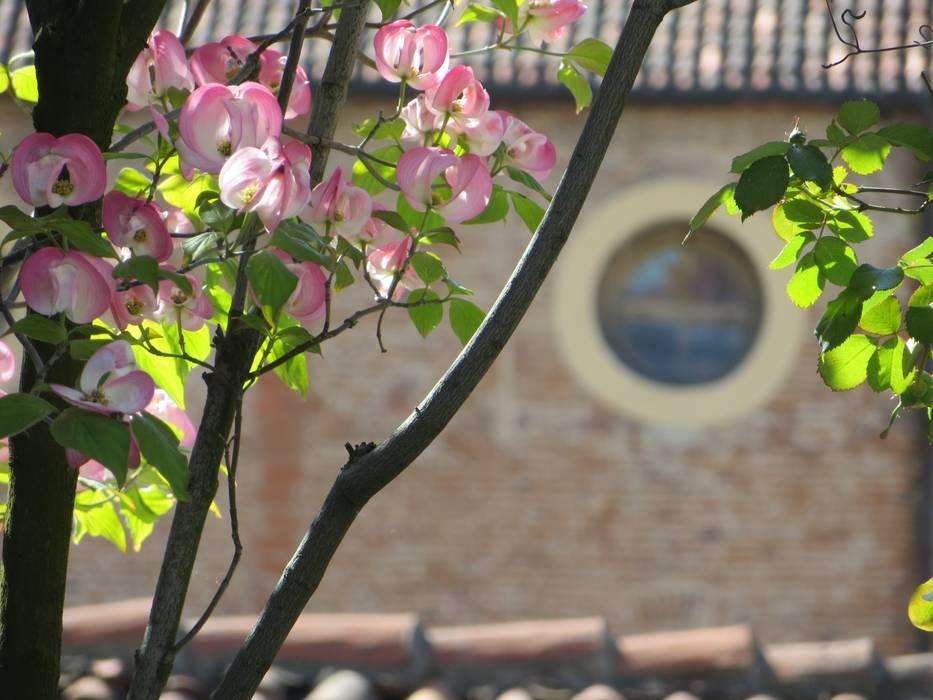 """"""" Classico con esuberanza """" - terrazza di pertinenza a dimora neoclassica.: Terrazza in stile  di MASSIMO SEMOLA PROGETTAZIONE GIARDINI MILANO"""