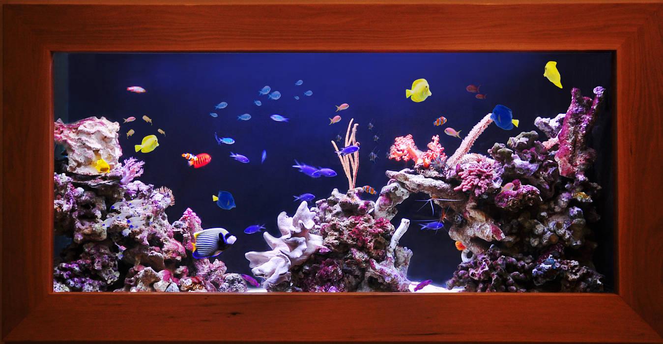 Aquarium in the city by Aquarium Architecture Tropical