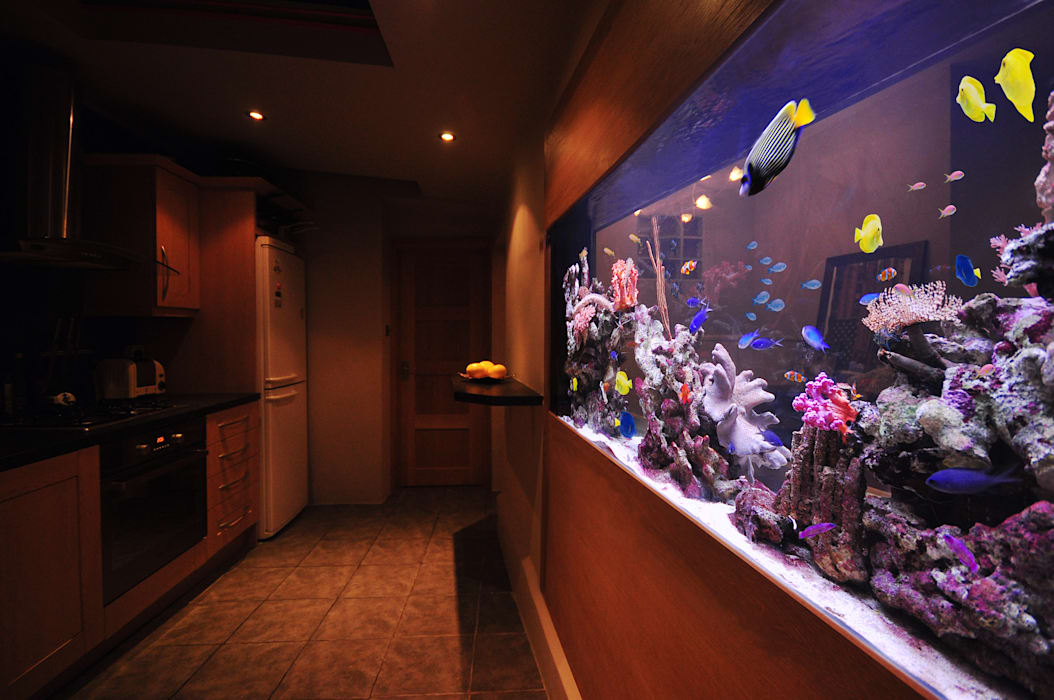 Aquarium in the city Salas de estilo tropical de Aquarium Architecture Tropical