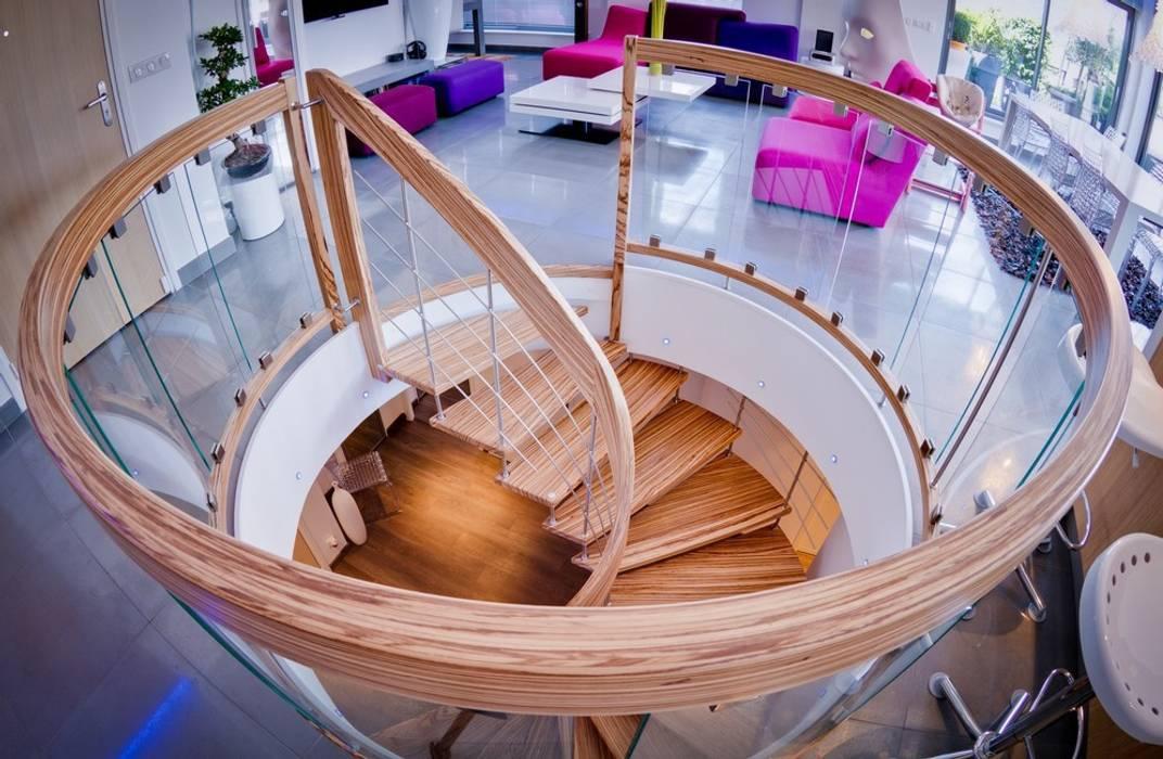 Escalier suspendu en Zebrano Couloir, entrée, escaliers modernes par ASCENSO Moderne
