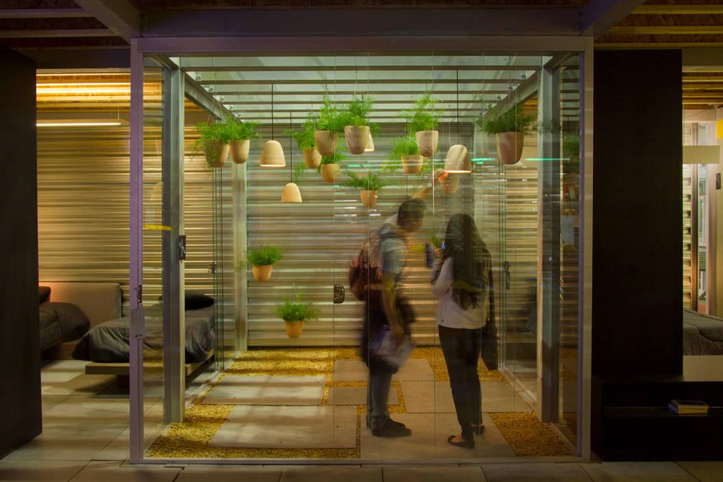 Jardim enquadrado (Instalação 2014) Jardins de inverno industriais por Luiza Soares - Paisagismo Industrial