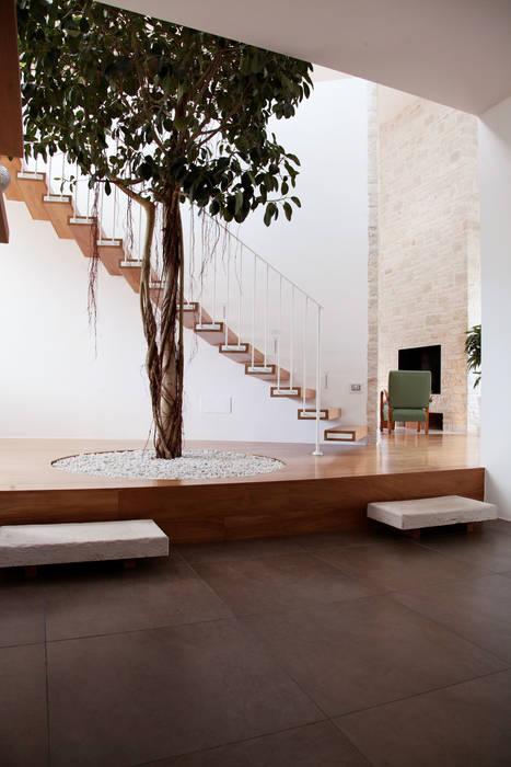 la presenza dell'albero Case in stile mediterraneo di m12 architettura design Mediterraneo