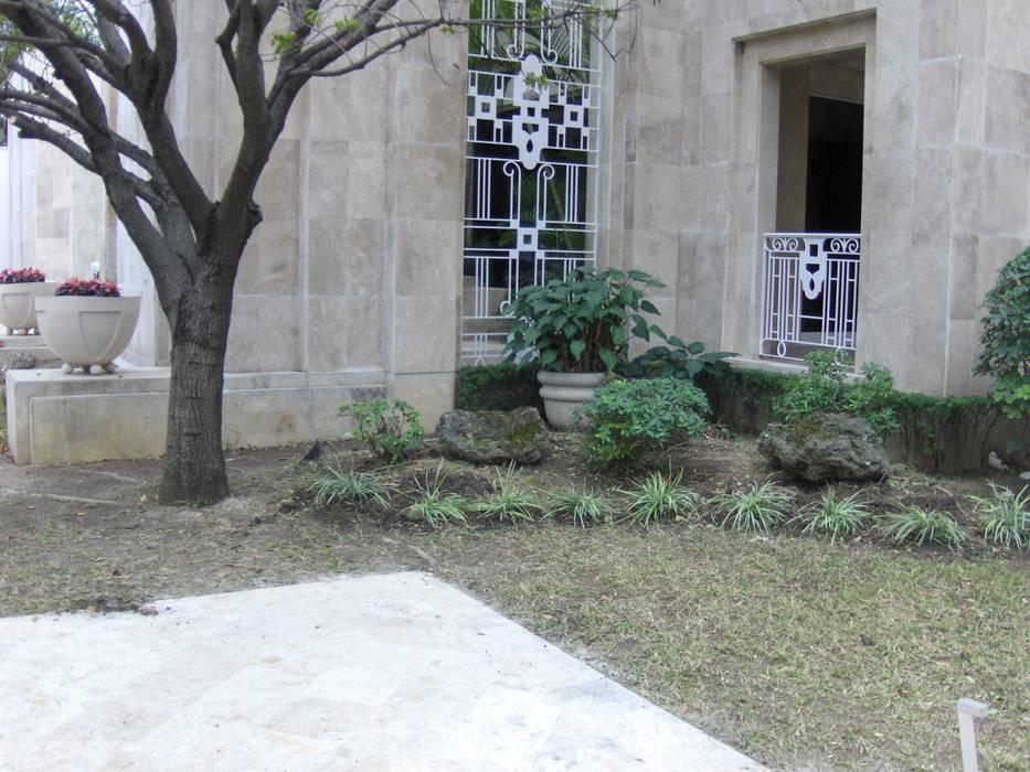 Jardin para entrada Jardines modernos de NATURA Moderno