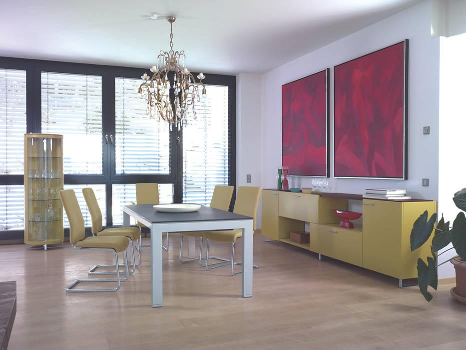 stretch... edle Rundvitrinen für alle Wohnberiche Moderne Wohnzimmer von die COLLECTION Modern