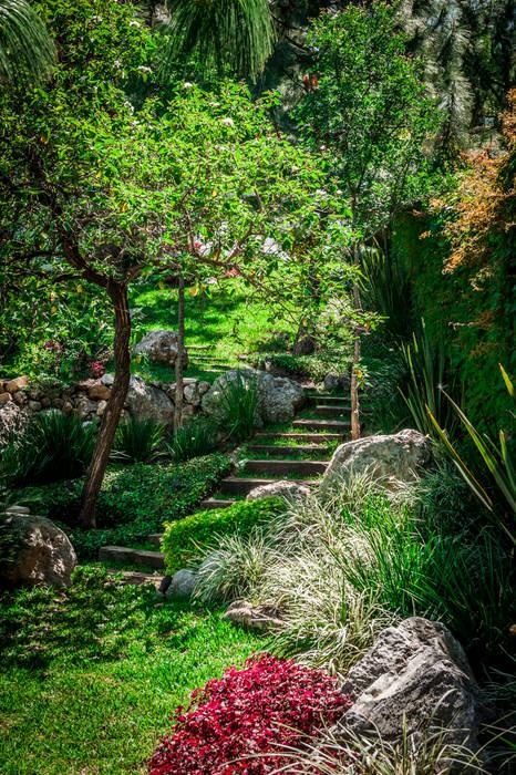 Garden by Urban Landscape
