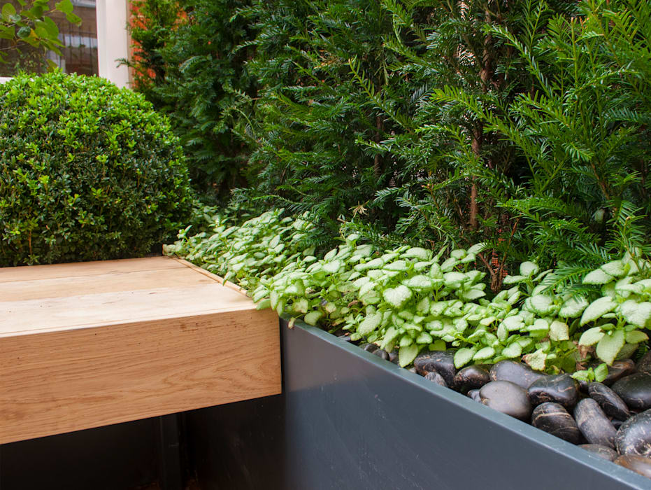 Knightsbridge Roof Terrace - Aralia Garden Design Modern commercial spaces by Aralia Modern Wood Wood effect