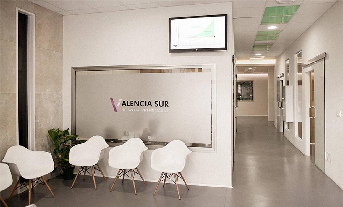 DISEÑO: Oficinas y Tiendas de estilo  de Sheila Cuello design