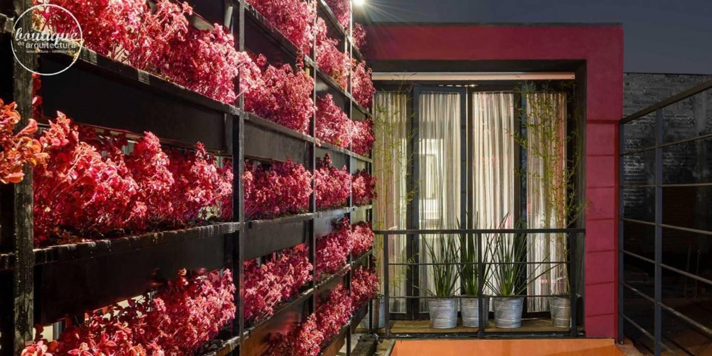 Modern garden by Boutique de Arquitectura (Sonotectura + Refaccionaria) Modern