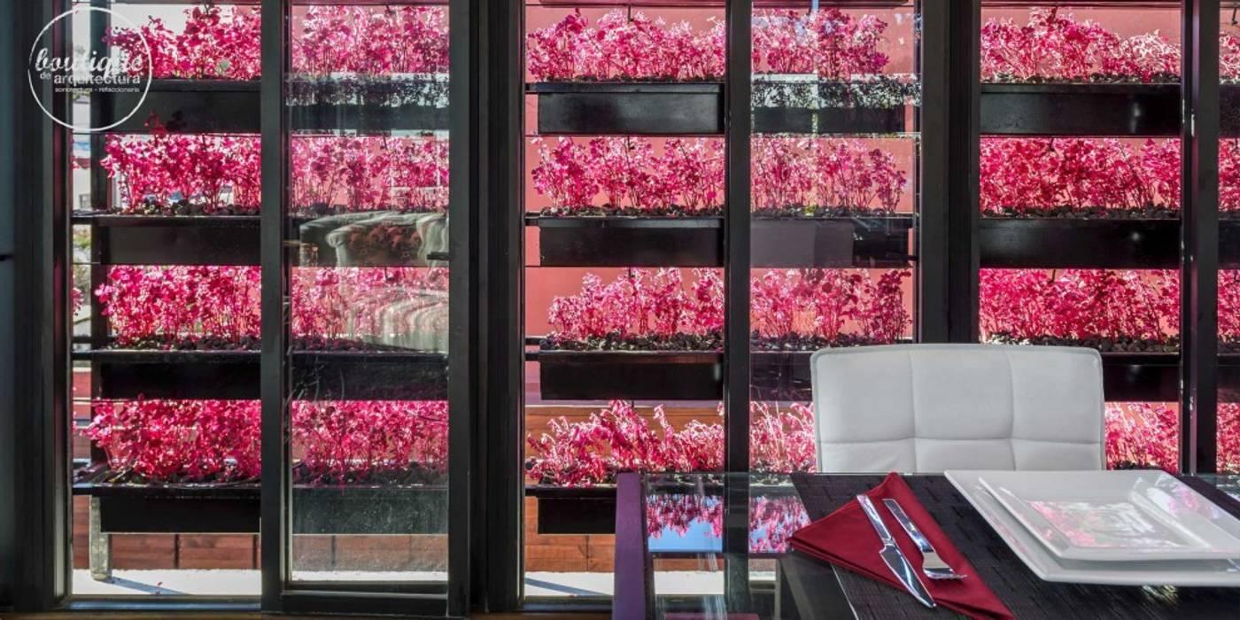 Estudio Coyoacan Puertas y ventanas modernas de Boutique de Arquitectura (Sonotectura + Refaccionaria) Moderno