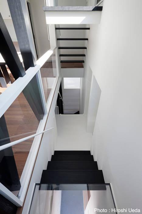 階段見下ろし モダンスタイルの 玄関&廊下&階段 の 石川淳建築設計事務所 モダン