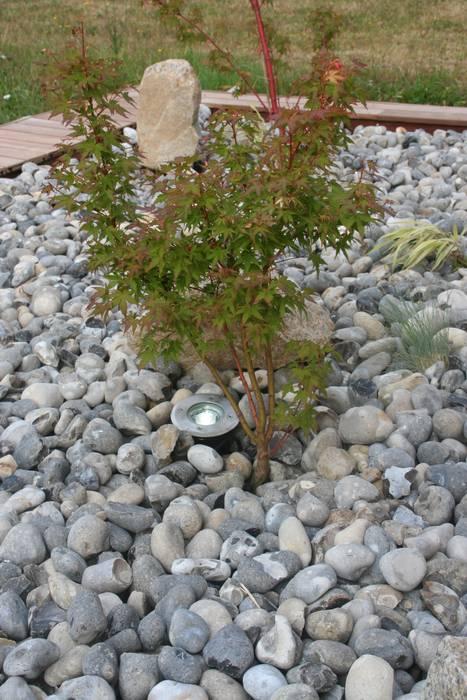 Erable du japon, spot et galets de rivière jardin asiatique ...