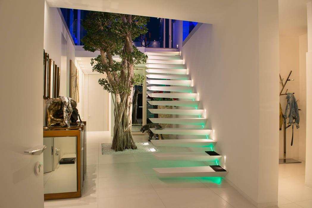 Extravagantes Treppendesign im Entrée mit Baum Moderner Flur, Diele & Treppenhaus von homify Modern