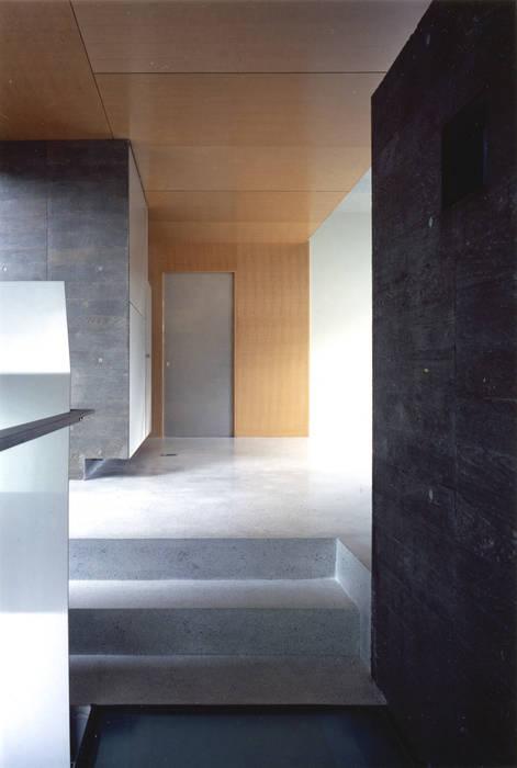 階段部を玄関ホール側へ見返す: JWA,Jun Watanabe & Associatesが手掛けた廊下 & 玄関です。,モダン