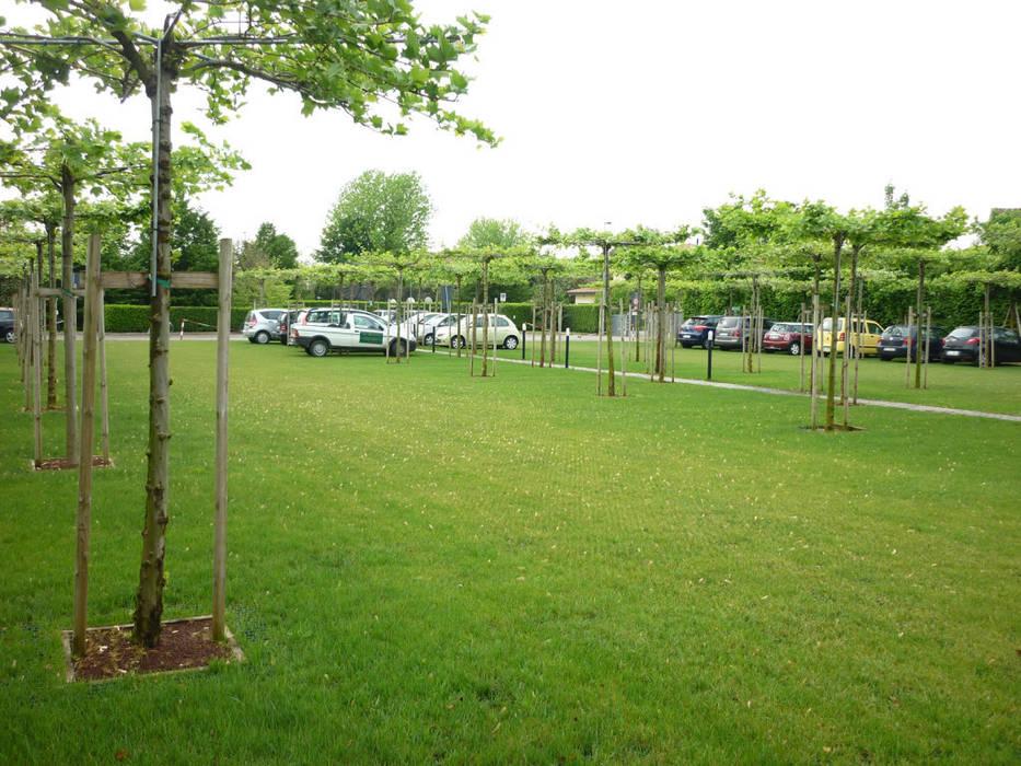 Le nostre realizzazioni: Parcheggio FABRICA (Centro Ricerche Benetton):  in stile  di Dal Ben Giardini