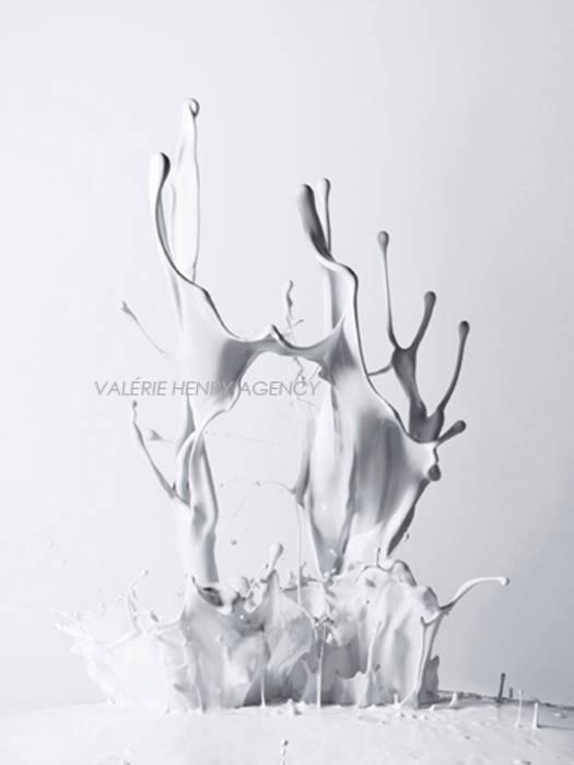 Lactescences Jean-Jacques Pallot