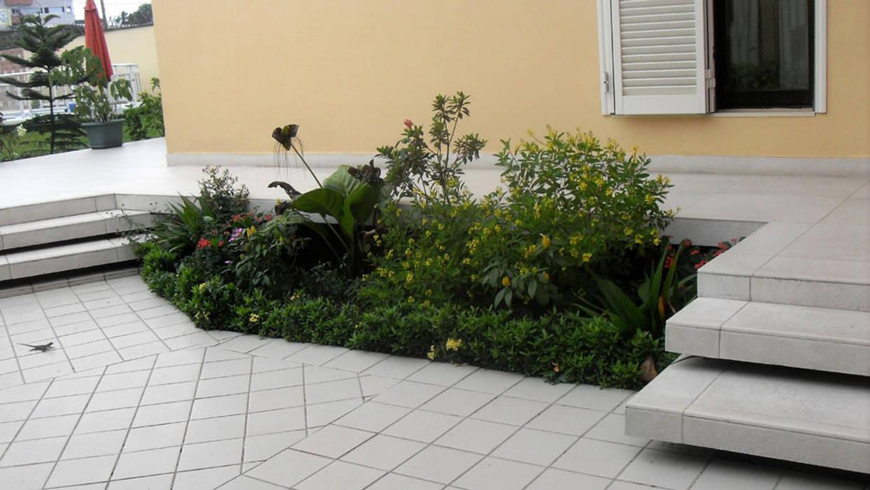 rapport au sol Maisons tropicales par Jules Bertrand Wokam / WDW Tropical
