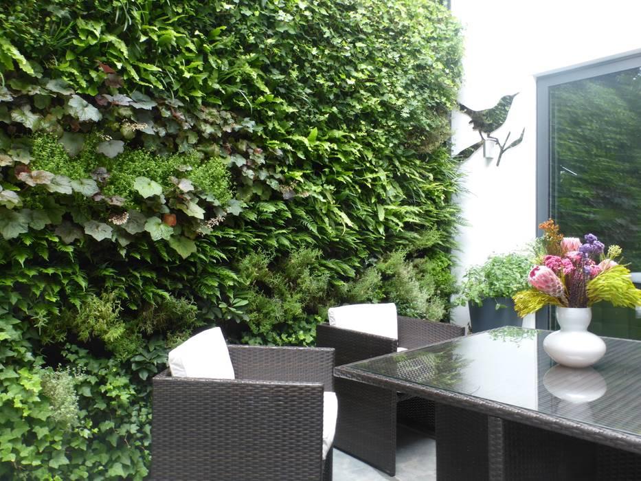 Paredes y pisos de estilo moderno por Treebox vertical growers