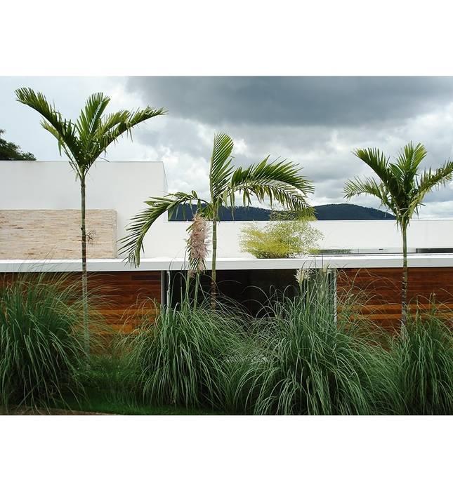 Projetos Varandas, alpendres e terraços minimalistas por Marcelo Bellotto Paisagismo Conceitual Minimalista