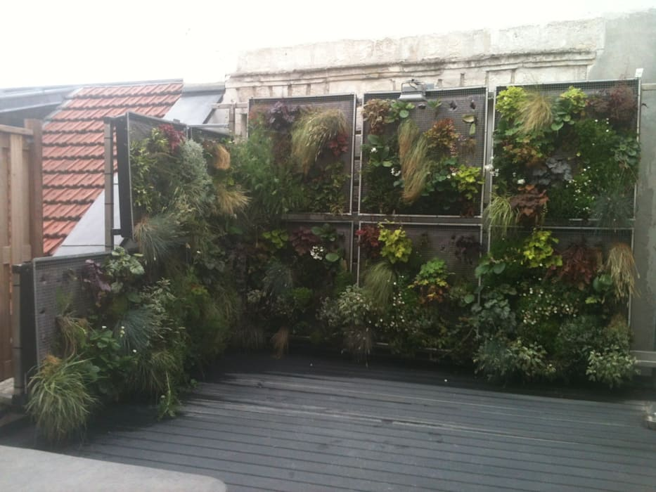 Mur végétale de la terrasse: Maisons de style  par AGENCE JULIETTE VAILLANT ARCHITECTE