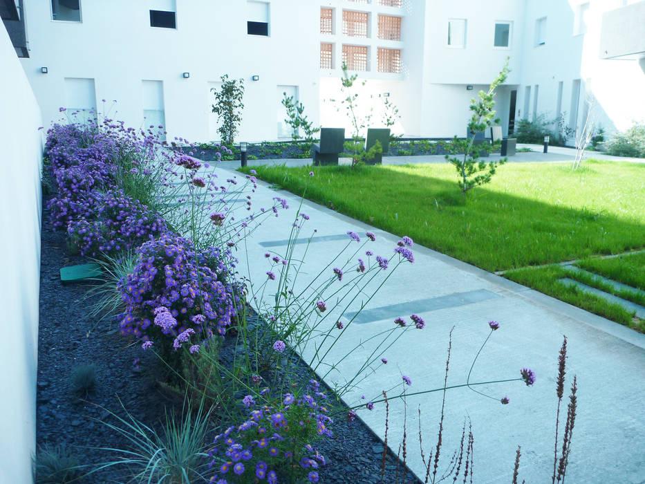 jardin noir Jardin moderne par Atelier du sablier Moderne