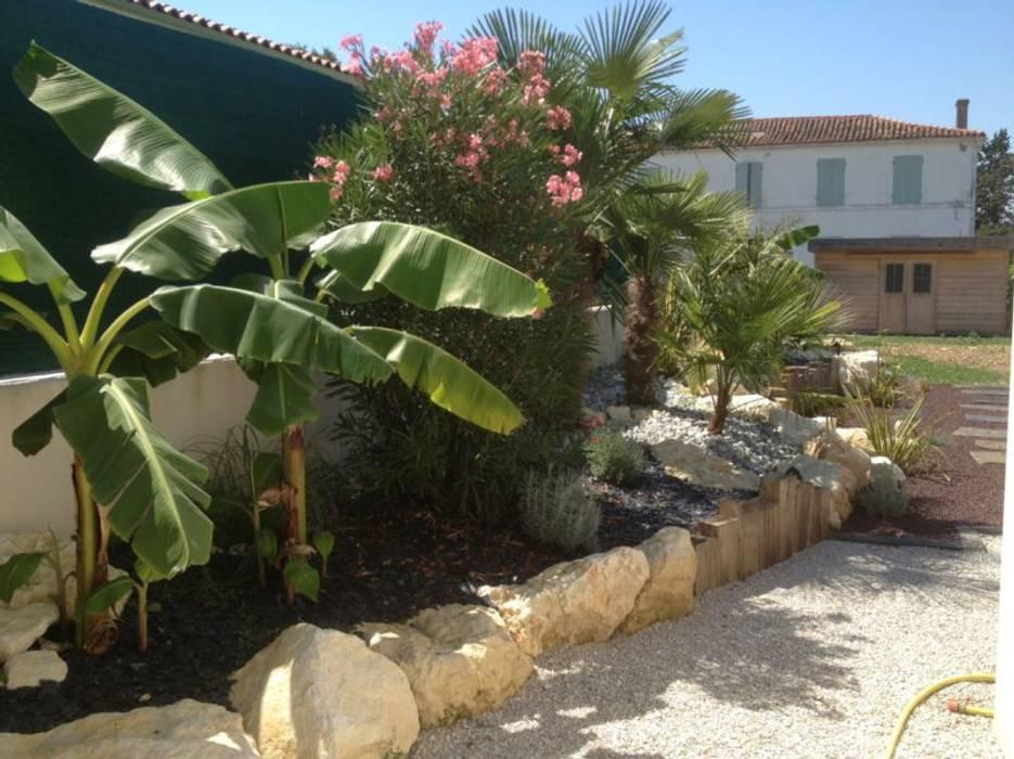 Tropischer Garten von INEO CONCEPT Tropisch