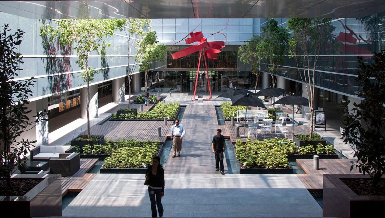 Study/office by Serrano Monjaraz Arquitectos