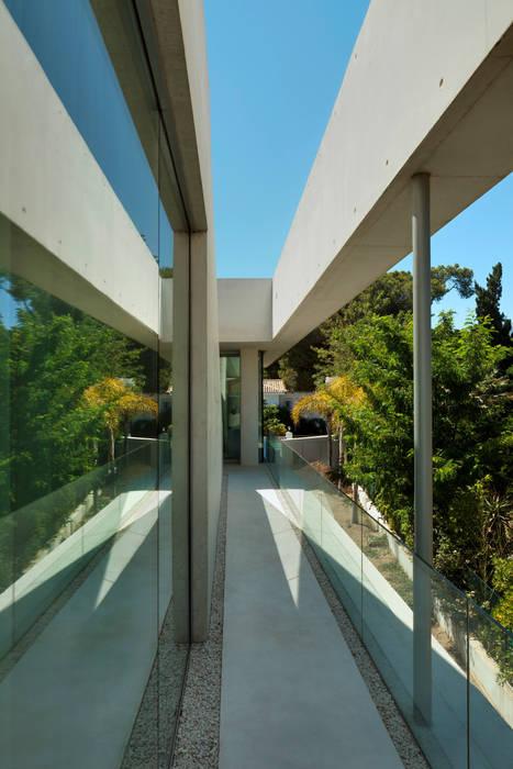 Jellyfish house Moderner Garten von Wiel Arets Architects Modern