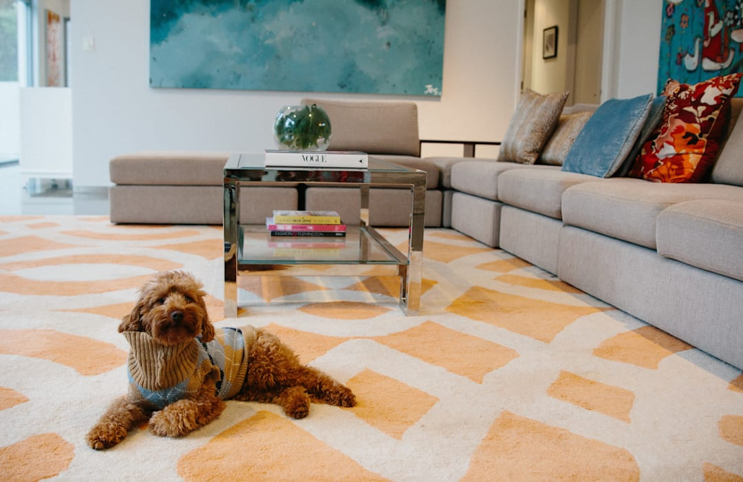Indie Style Interiors - chic living rooms for the whole family to enjoy:  Living room by Indie Style Interiors, Eclectic