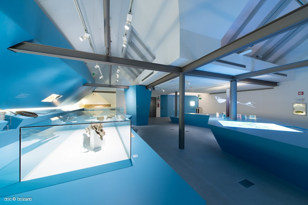 Frozen Stories - l'allestimento: Musei in stile  di DOC SRL,