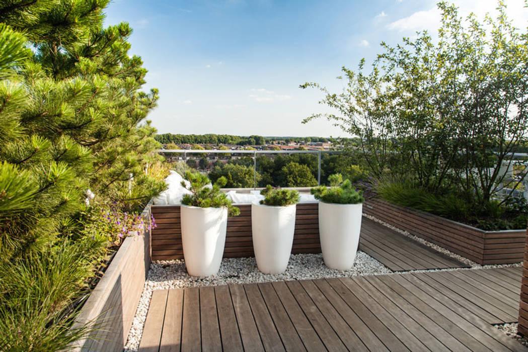 Modern Terrace by Studio REDD exclusieve tuinen Modern