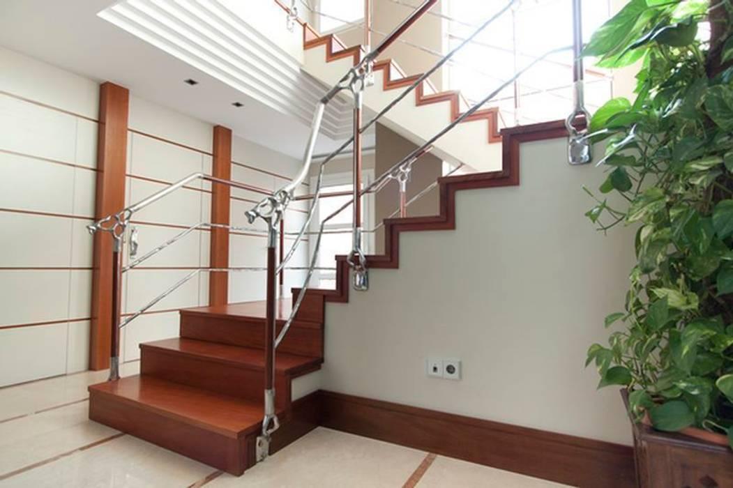 Escalera de Madera de Talí Pasillos, vestíbulos y escaleras de estilo tropical de MUDEYBA S.L. Tropical