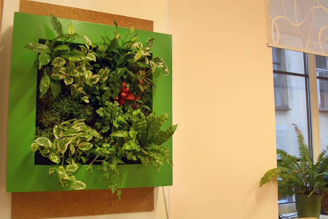 Фитокартина в школьном классе Рабочий кабинет в классическом стиле от Зеленый мир Классический