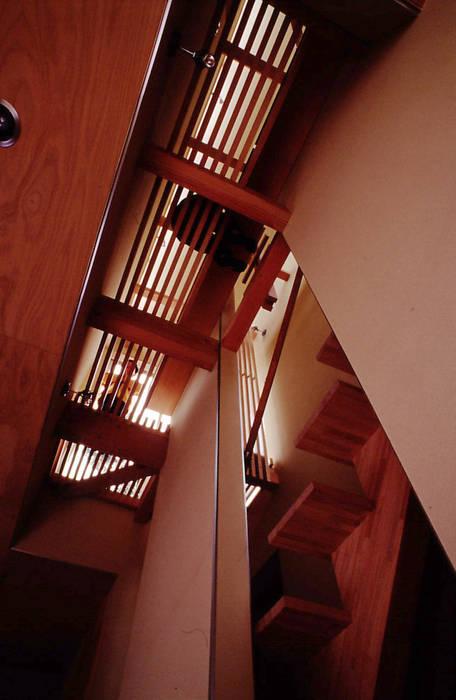 空中図書館: 濱嵜良実+株式会社 浜﨑工務店一級建築士事務所が手掛けた廊下 & 玄関です。