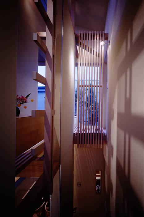 TAN 階段越しにテラスをみる: 濱嵜良実+株式会社 浜﨑工務店一級建築士事務所が手掛けた廊下 & 玄関です。
