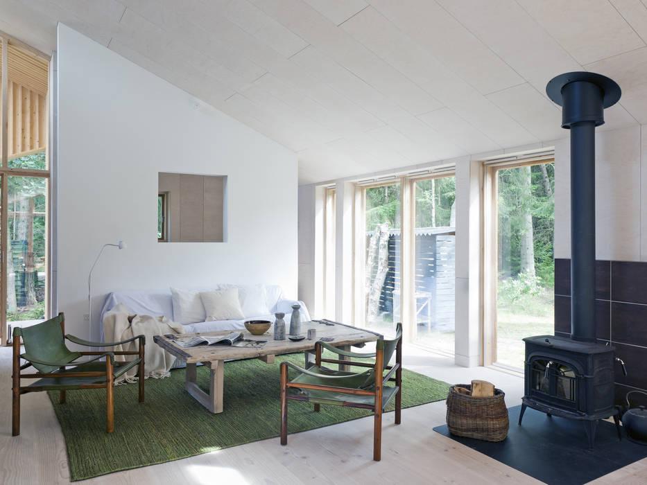 Living Room Scandinavian style living room by Facit Homes Scandinavian
