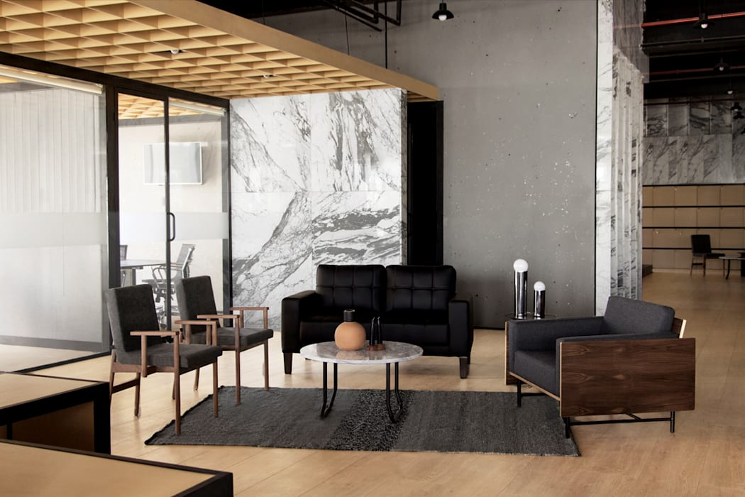 Zona General de Studio Marco Villa Mateos Moderno