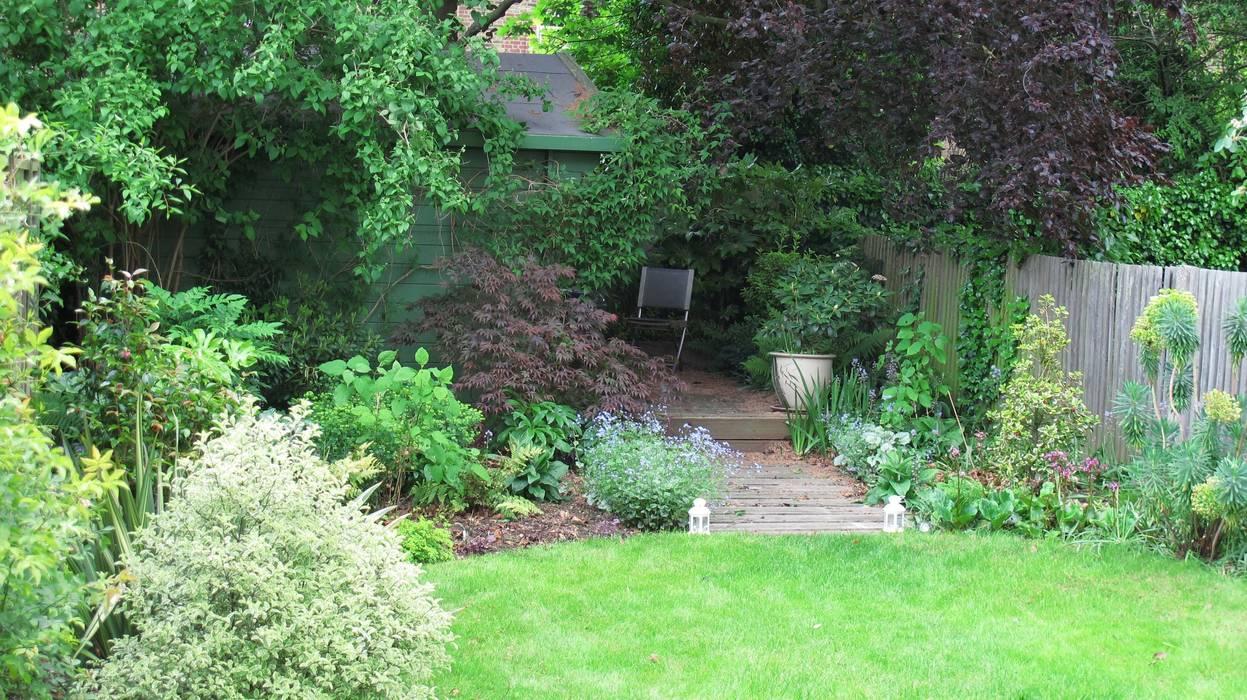 woodland plants Rustic style garden by Fenton Roberts Garden Design Rustic