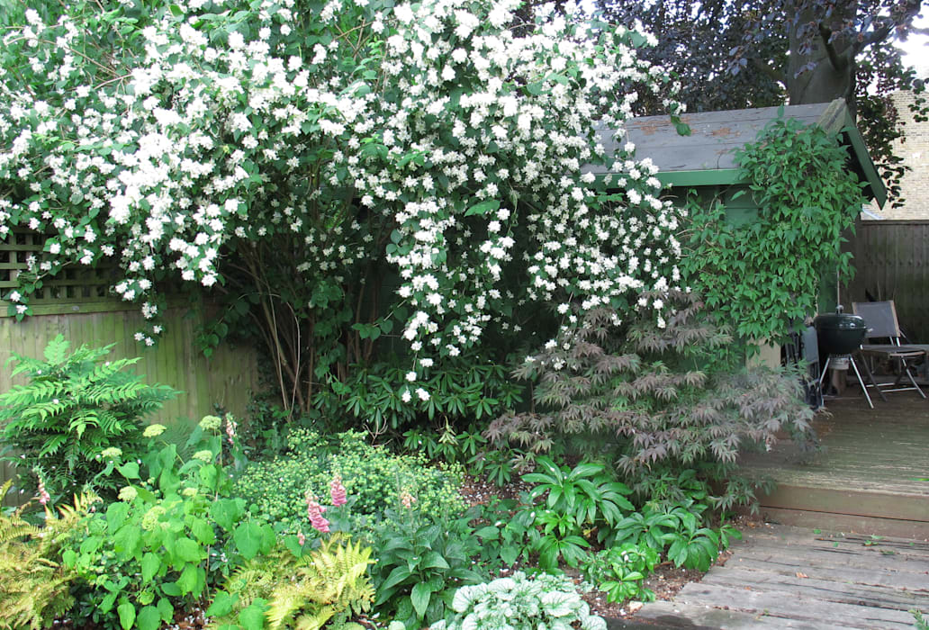 de style  par Fenton Roberts Garden Design, Rustique