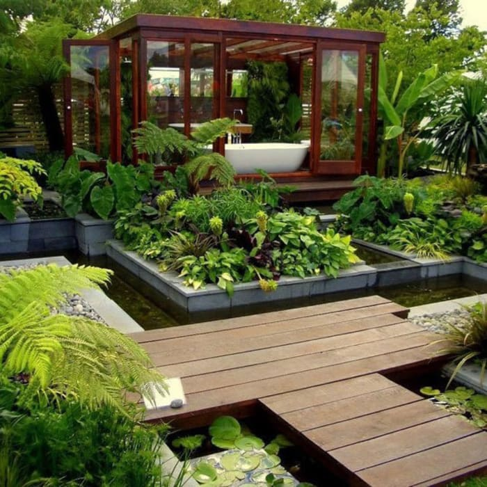 Tropical style gardens by Coaching Paysage Tropical