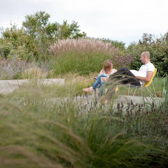 mengsel van planten uit de omgeving en gecultiveerde planten die elkaar versterken:  Tuin door Andrew van Egmond (ontwerp van tuin en landschap), Modern